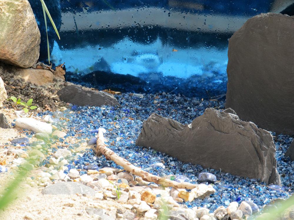 Dünenlandschaft Im Garten Anlegen no 3 strandinsel gartenio garten perlen